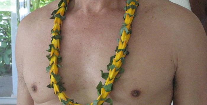a man wearing a lei