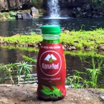 Bottle of KonaRed on a rock in front of a stream