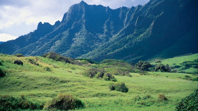 Top 5 Long Hiking Trails on Oahu