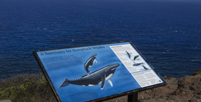 Sign at site showing whale locations