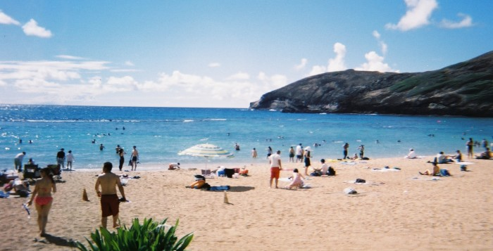 the beach at hanauma bay