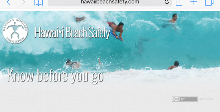 a screenshot of a beach safety website with a picture of boogie boarders in the ocean