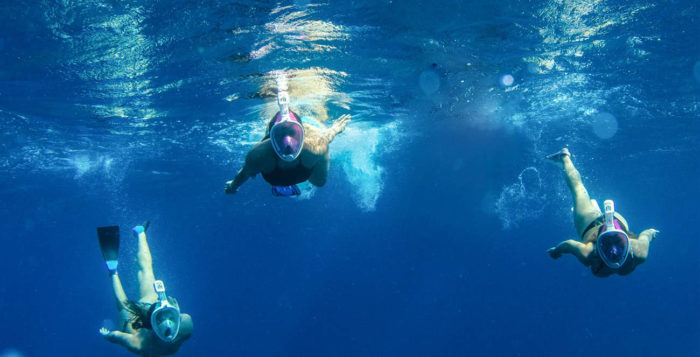 three people swimming with snorkel masks