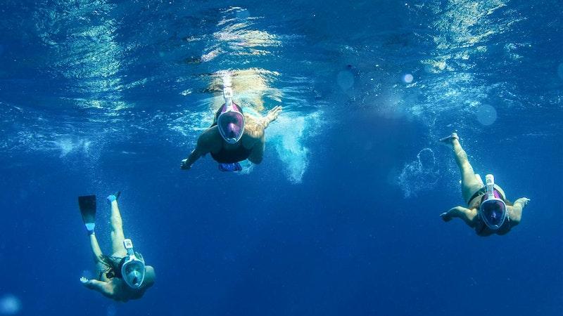 Snorkel in Hawaii - Like a Ninja! | Hawaii Aloha Travel