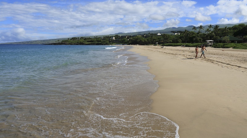 Snorkel Away! The Clearest Beaches in Hawaii