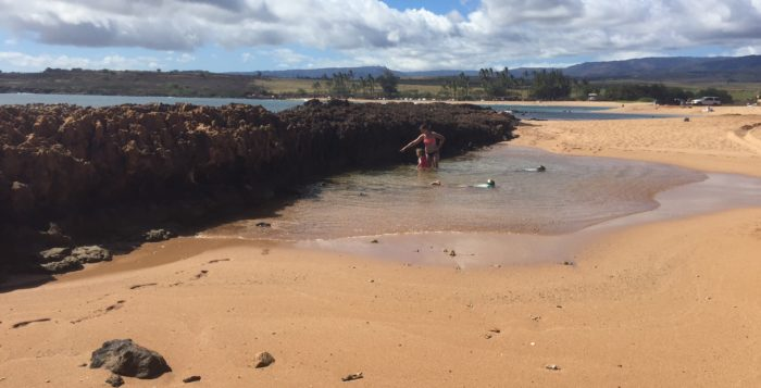people playing in the tide pools