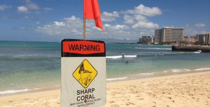 a sign informing beachgoers of sharp coral