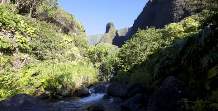 iao valley state park on maui