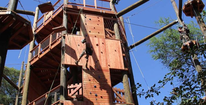 a treehouse with a zipline
