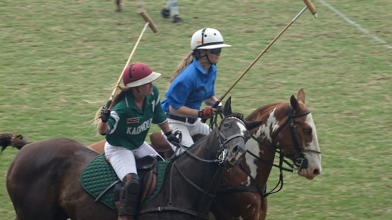 Polo in Hawaii: Enjoy the Game of Kings in Paradise