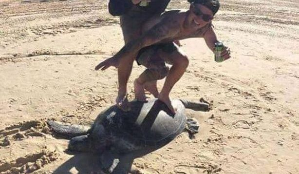 two men on a sea turtle
