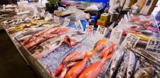 Fresh fish on ice at the fish market