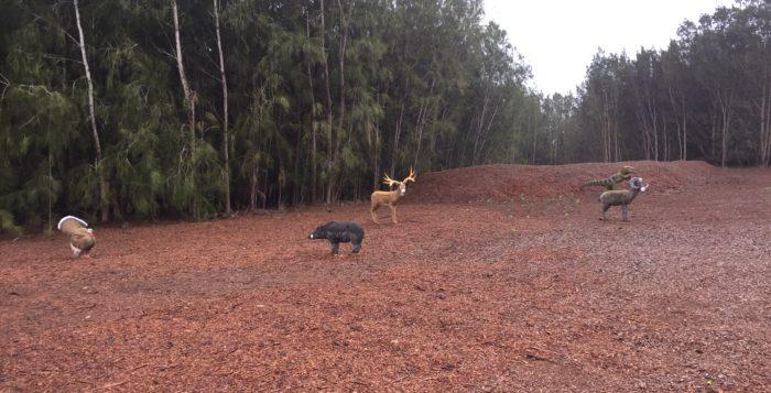 animal targets on an archery range