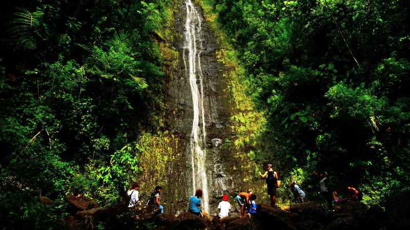 Meandering to Manoa Falls