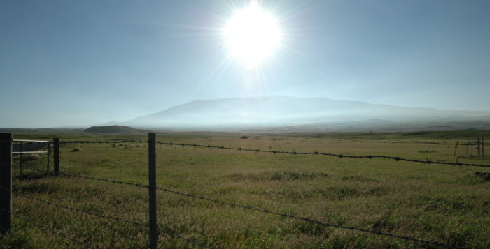 Parker Ranch with Mauna Kea in background
