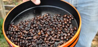 Coffee beans in a tin