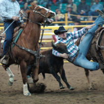 two men in a rodeo ring while one many is holding a calf's head