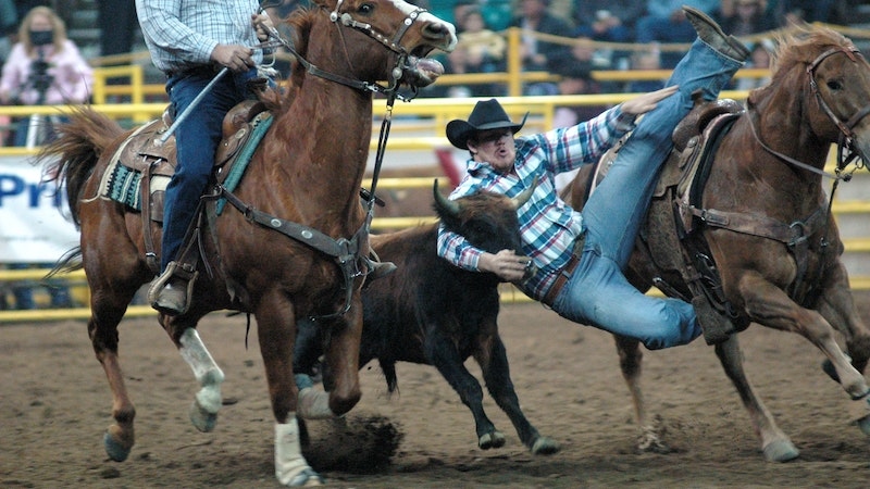 Giddy Up! 5 Reasons to Attend a Rodeo in Hawaii