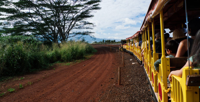 Photo from Pineapple Express as it goes through Dole Plantation