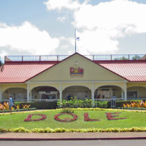Main structure at Dole Plantation
