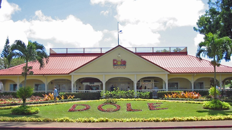 Treats, Trails, and Trains at the Dole Plantation in Hawaii