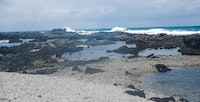 The secluded, volcanic coast of Kaena Point makes for some of the best views on the island.