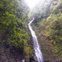 Lulumahu Falls is a 50-foot waterfall in Honolulu.