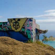 View from the top of the Pillbox Trail.