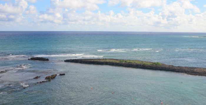 Celebrate Ocean Fest at Turtle Bay Resort