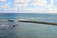 Celebrate Ocean Fest at Turtle Bay Resort