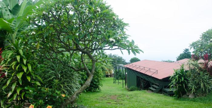 Greenwell Farms in Kona, Hawaii