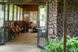Visit the Visitor's Center at Hoʻomaluhia Botanical Garden to get a map, bird checklist, and to talk to volunteers about current events.
