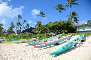 Lanikai Beach is beautiful, but you have to bring your own shade.