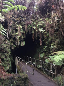 The entrance to Thurston Lava Tube is located in a lush forest.