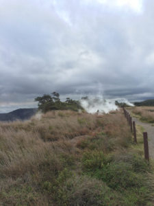 Take a quick stop to check out the steam vents, located near Kilauea Visitor's Center.