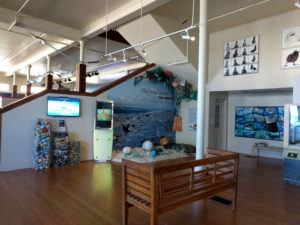 Inside the Mokupāpapa Discovery Center. Although it's small, there is a lot to see here!