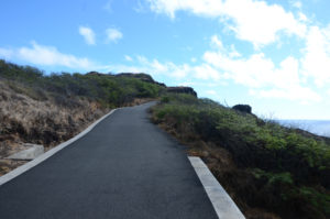 The paved trail on the Makapu'u Lighthouse Trail makes it a great place for strollers, families, and even dogs.