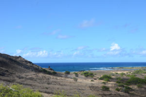From start to finish, Makapu'u Lighthouse Trail offers spectacular views.