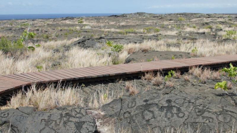 Go Back in Time on the Pu'u Loa Petroglyphs Trail