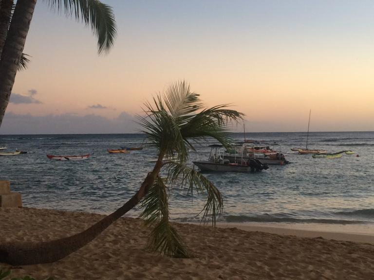 7 Restaurants with a view on Oahu | Hawaii Aloha Travel
