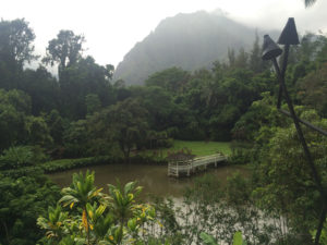 Haleiwa Joe's in Kaneohe offers incredible views that are different from what you will find along the coastline.