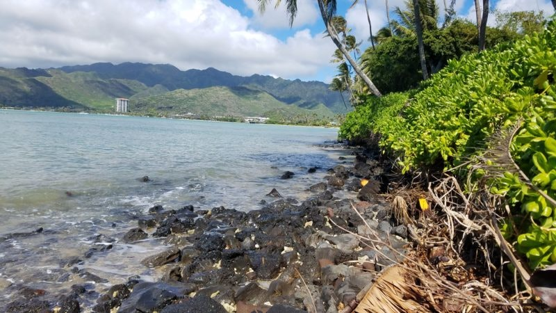 Hawaii's King Tides bring in the New Year