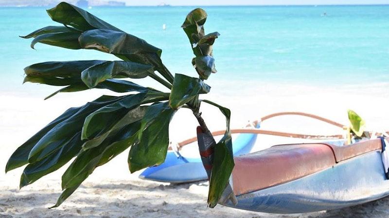 Josh Guerra and the Hawaiian Farewell: Sad but sweet