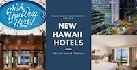 collage of new hawaii hotels, Surfjack club, Hyatt Centric, Alohilani and Laylow