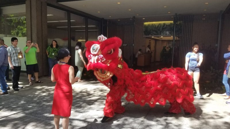 Chinese New Year of the Pig in Hawaii