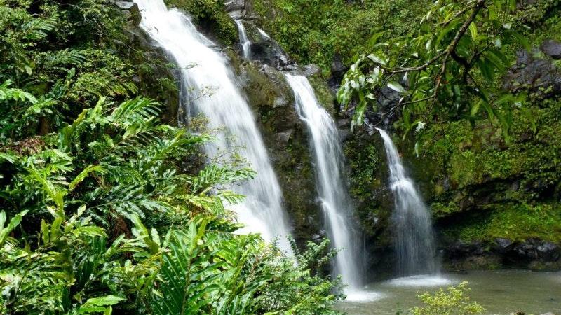 Neighbor Island Waterfall Rappelling