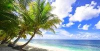 Oahu plastics ban