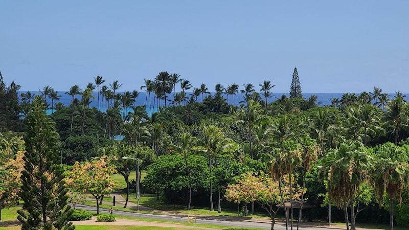 "Kauai ""resort bubble"" plan moves forward"