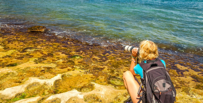 Hawaii is missing you! –  Most locals want visitors to return to the islands