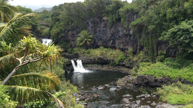 Hiking Hawaii safely